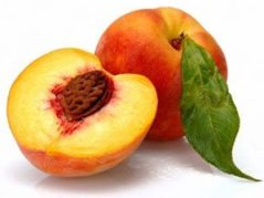 พีช (Peach: Prunus persica (L.) Batsch) หรือ ท้อ ผลไม้เพื่อสุขภาพ