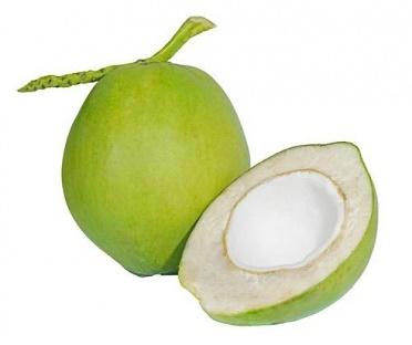 มะพร้าว (Cocos nucifera)